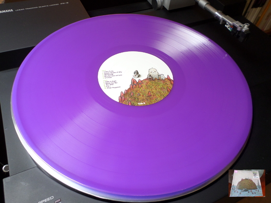 J. Mascis Several Shades of Why