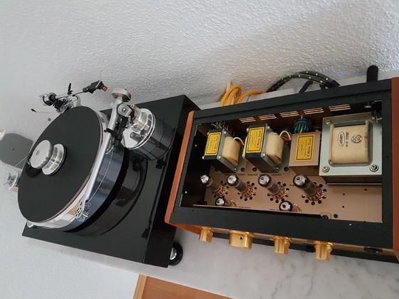 Leben CS300XS u.Acoustic Solid