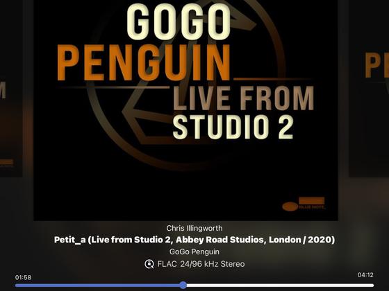 Vigo Penguin