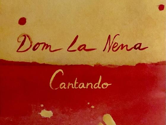 Dom la Nena- Cantando