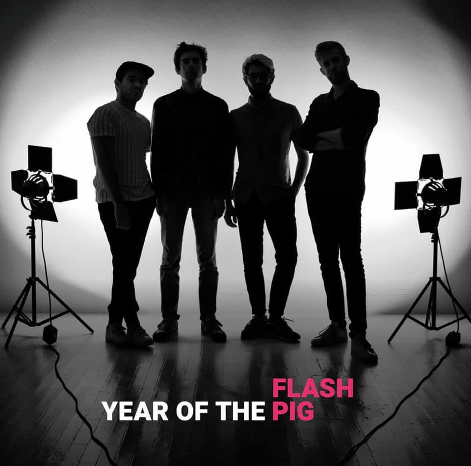 flash pig